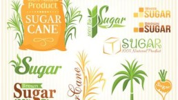 Diferencias entre el azúcar refinado y el natural. Axa Healthkeeper