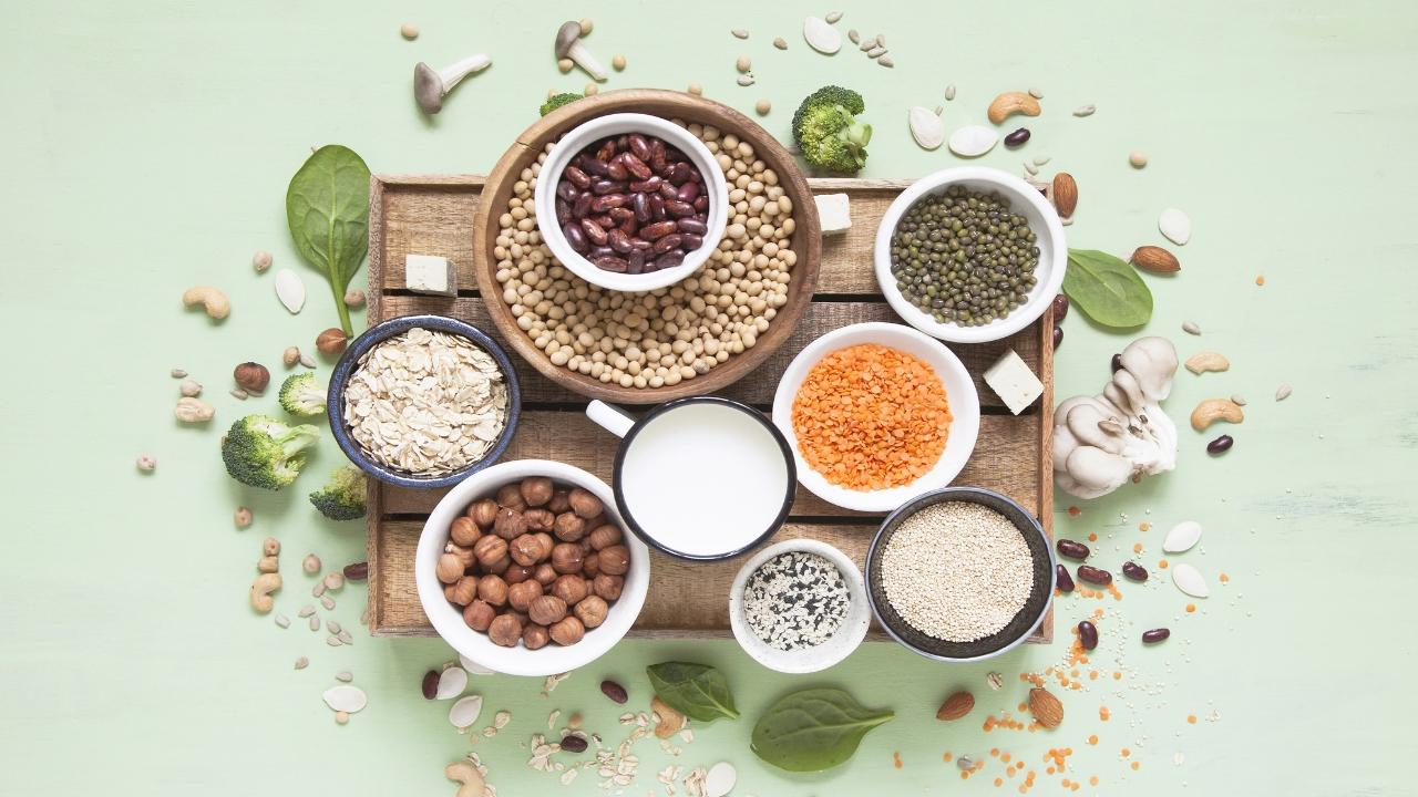 alimentos con mayor cantidad de proteina vegetal