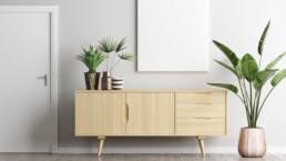 Plantas de interior para purificar el aire de tu hogar