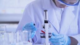 Estudio en laboratorio de nuevos tratamientos contra la obesidad